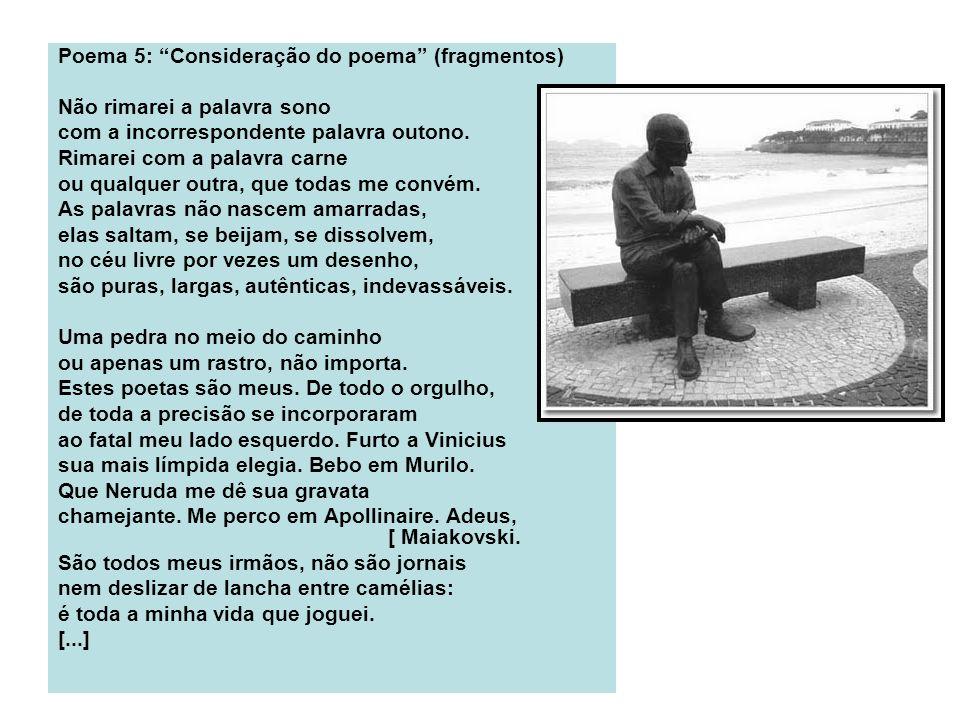 Poema 5: Consideração do poema (fragmentos)