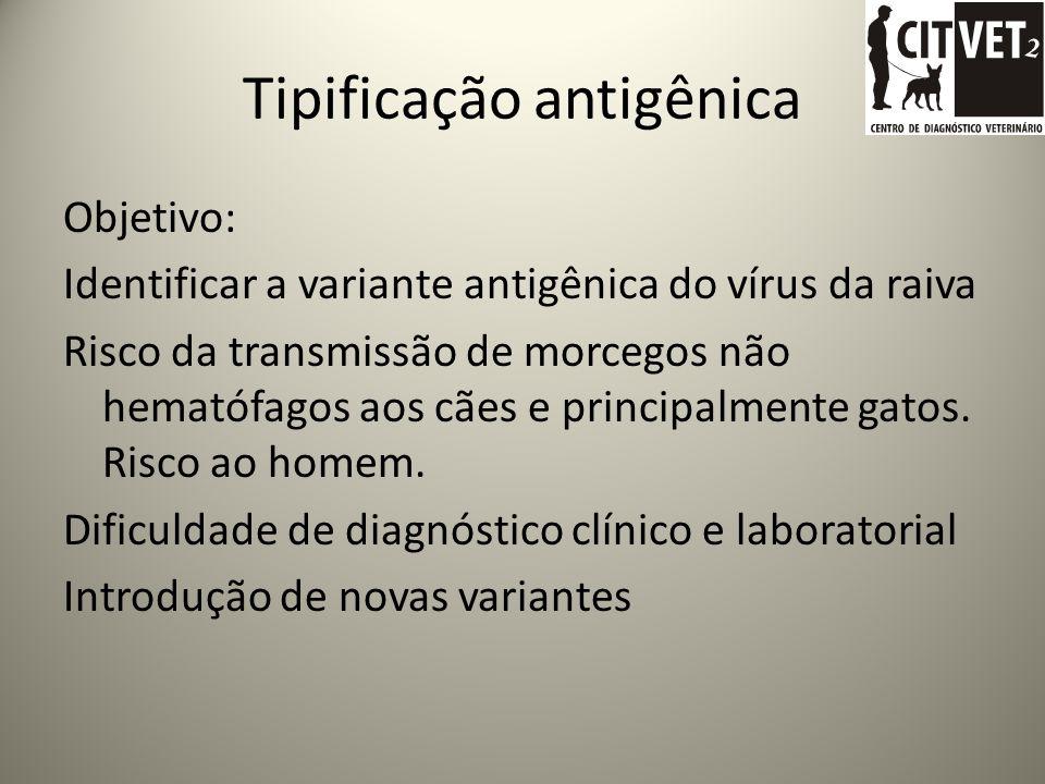 Tipificação antigênica