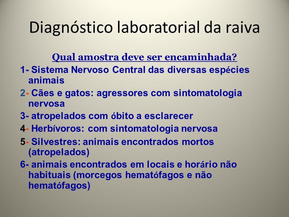 Diagnóstico laboratorial da raiva