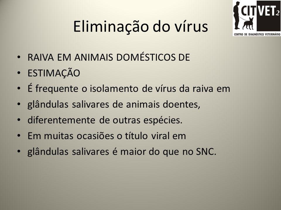 Eliminação do vírus RAIVA EM ANIMAIS DOMÉSTICOS DE ESTIMAÇÃO