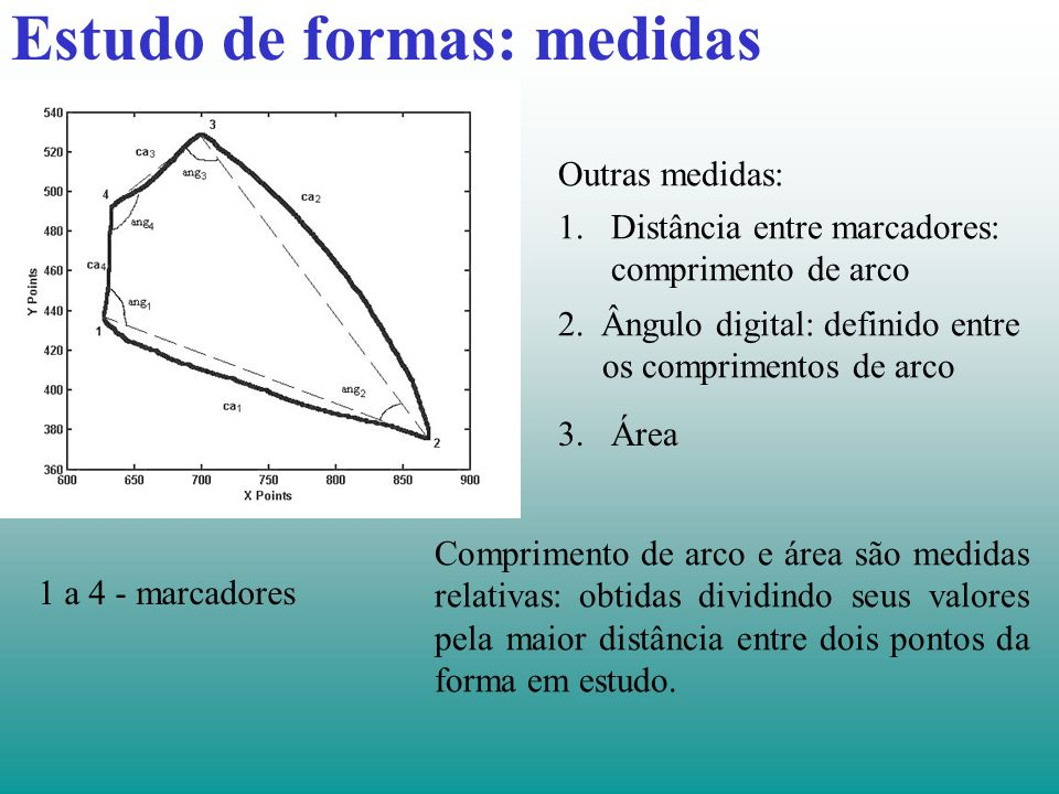 Estudo de formas: medidas