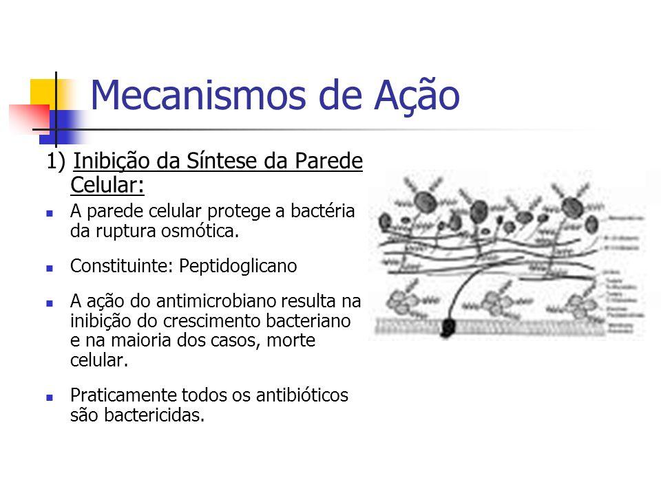 Mecanismos de Ação 1) Inibição da Síntese da Parede Celular: