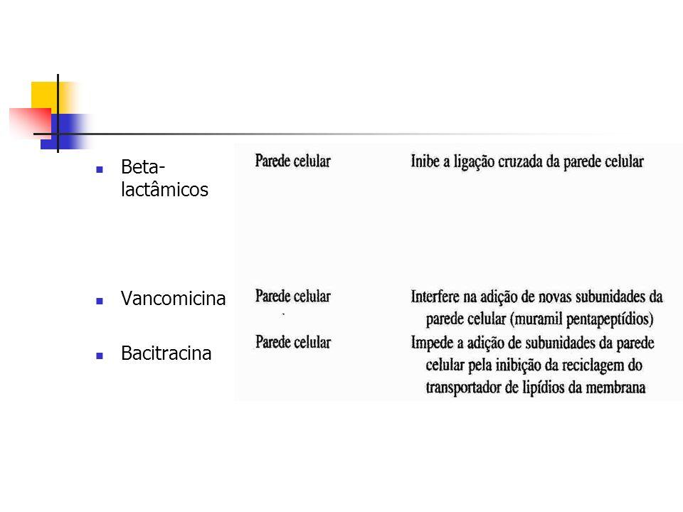 Beta-lactâmicos Vancomicina Bacitracina