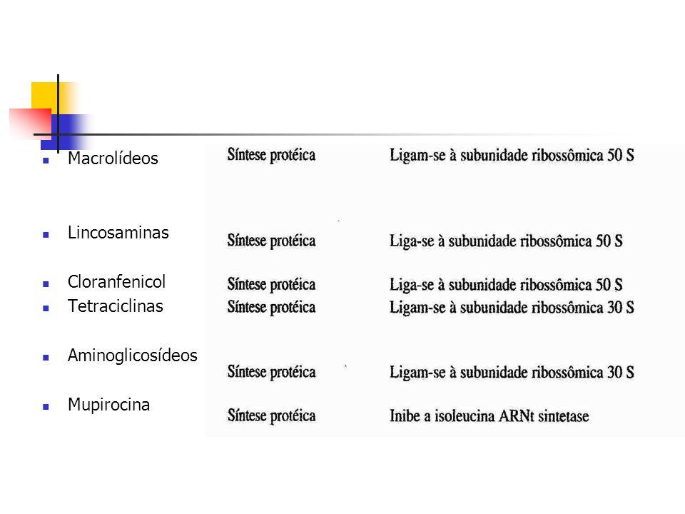 Macrolídeos Lincosaminas Cloranfenicol Tetraciclinas Aminoglicosídeos Mupirocina