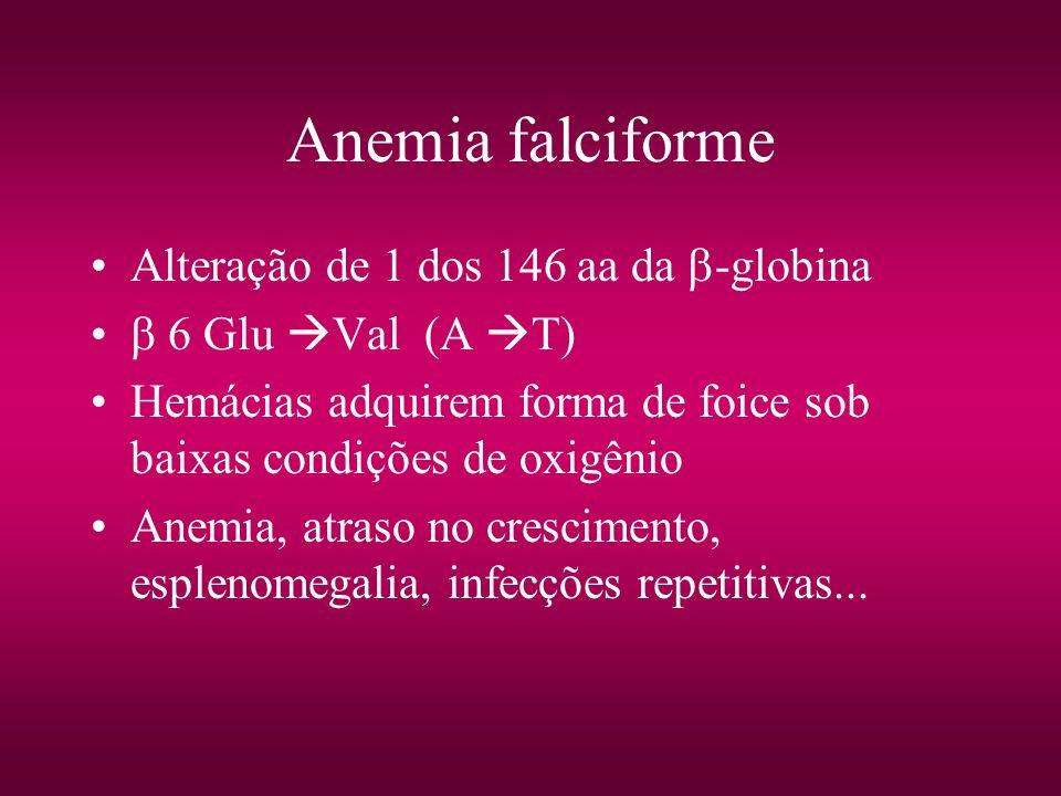 Anemia falciforme Alteração de 1 dos 146 aa da -globina