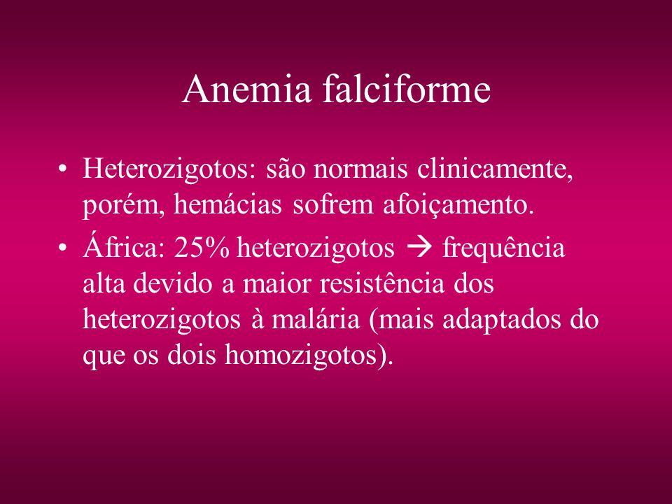 Anemia falciforme Heterozigotos: são normais clinicamente, porém, hemácias sofrem afoiçamento.