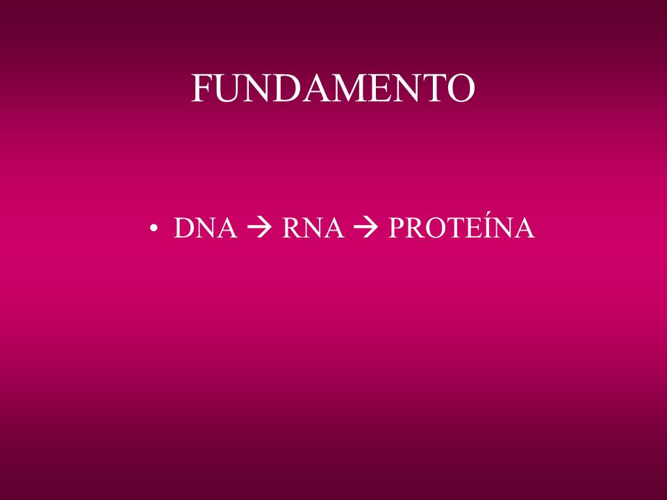 FUNDAMENTO DNA  RNA  PROTEÍNA