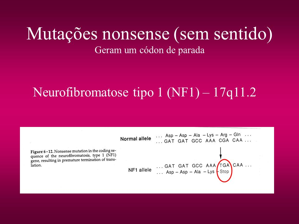 Mutações nonsense (sem sentido) Geram um códon de parada