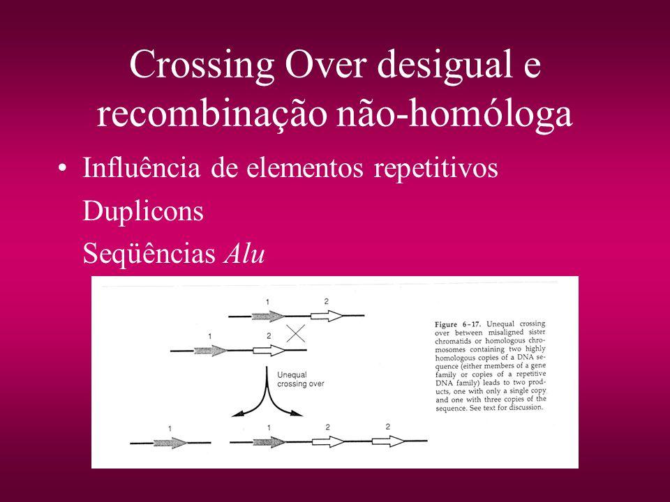 Crossing Over desigual e recombinação não-homóloga
