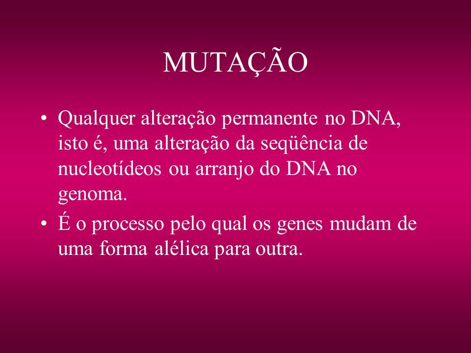 MUTAÇÃOQualquer alteração permanente no DNA, isto é, uma alteração da seqüência de nucleotídeos ou arranjo do DNA no genoma.