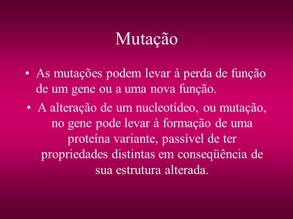 MutaçãoAs mutações podem levar à perda de função de um gene ou a uma nova função.