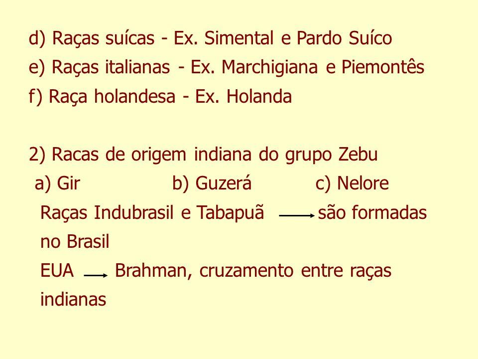 d) Raças suícas - Ex. Simental e Pardo Suíco