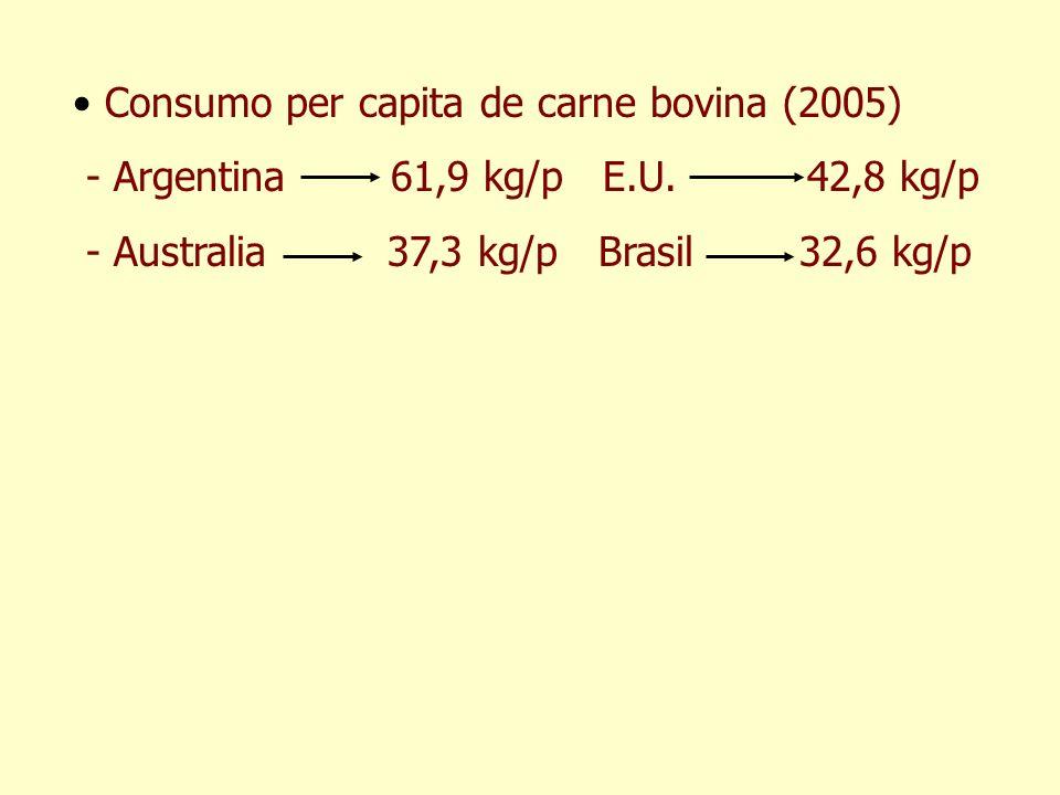 Consumo per capita de carne bovina (2005)