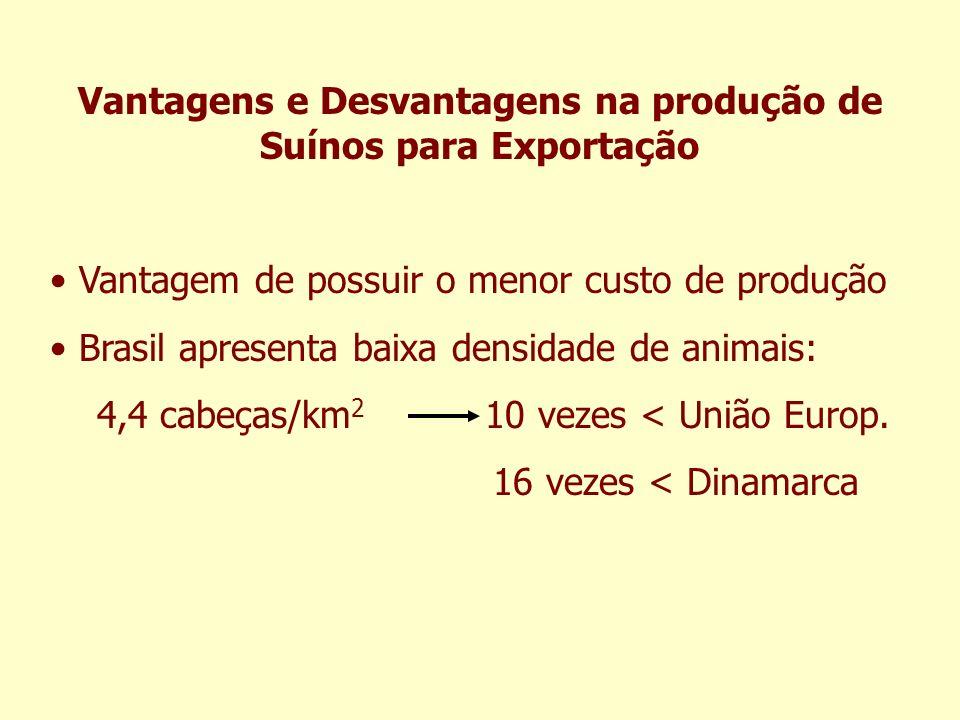 Vantagens e Desvantagens na produção de Suínos para Exportação