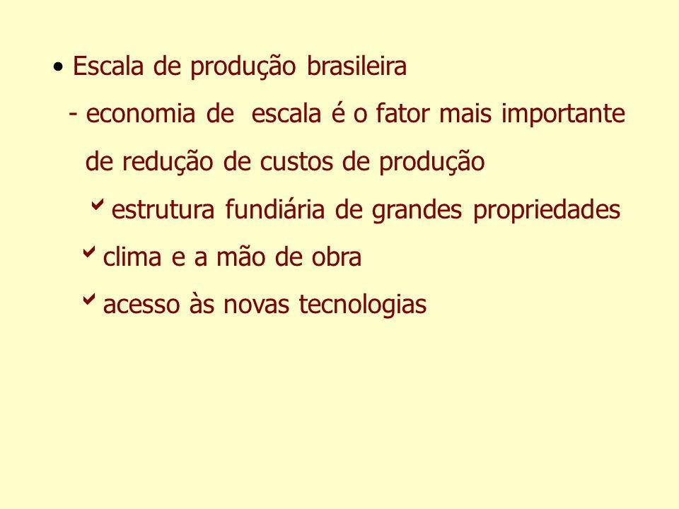 Escala de produção brasileira