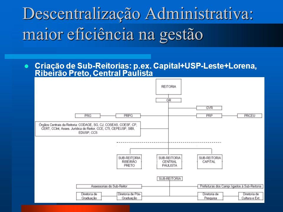 Descentralização Administrativa: maior eficiência na gestão