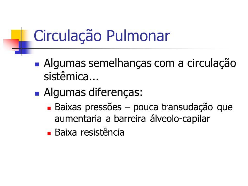 Circulação Pulmonar Algumas semelhanças com a circulação sistêmica...