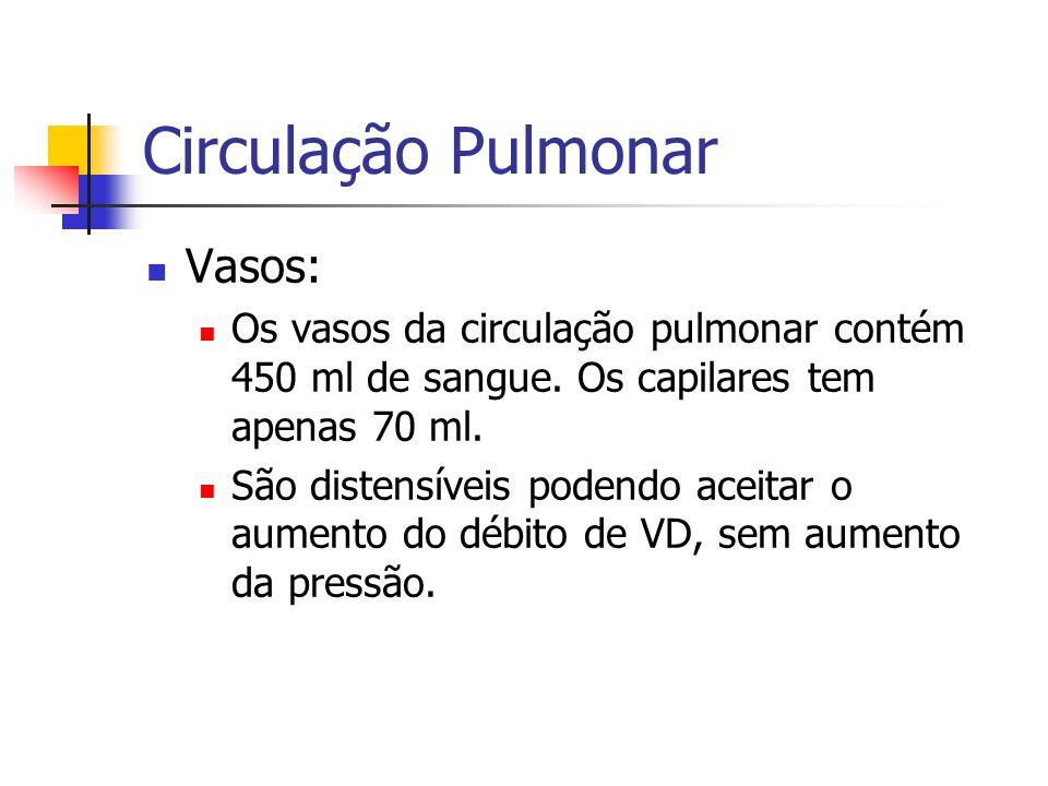 Circulação Pulmonar Vasos: