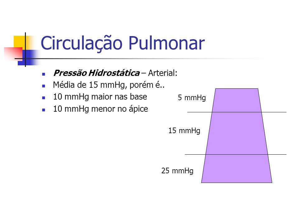 Circulação Pulmonar Pressão Hidrostática – Arterial: