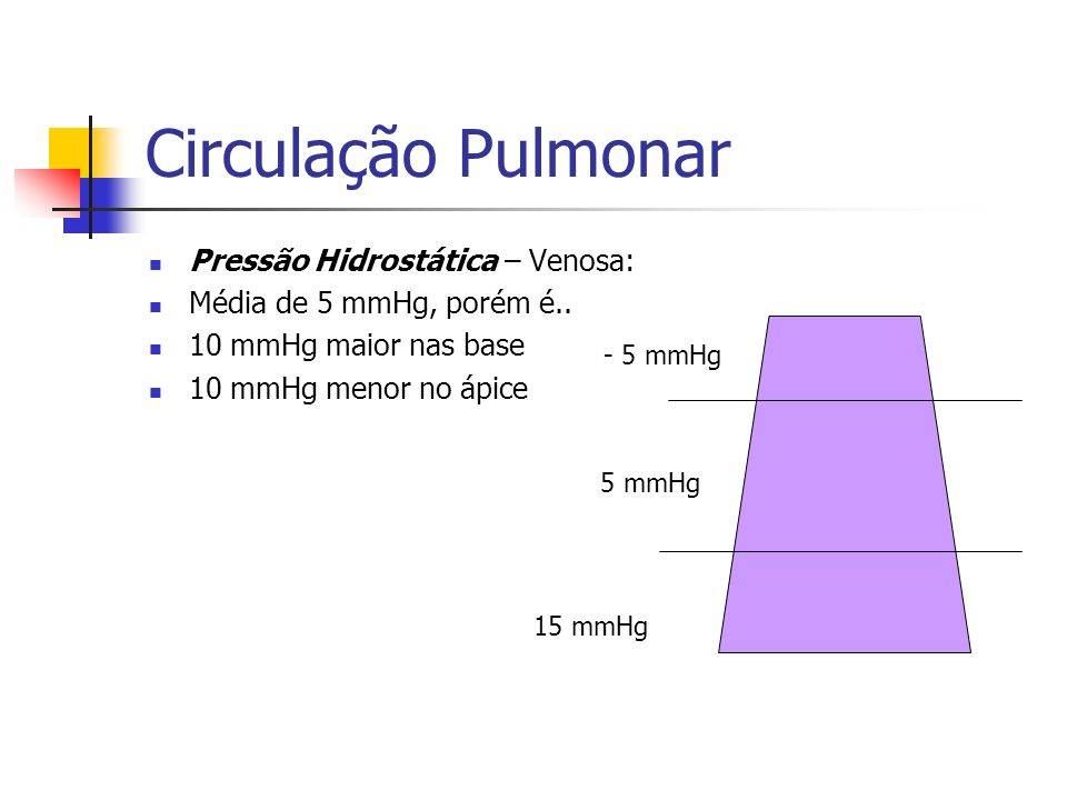 Circulação Pulmonar Pressão Hidrostática – Venosa: