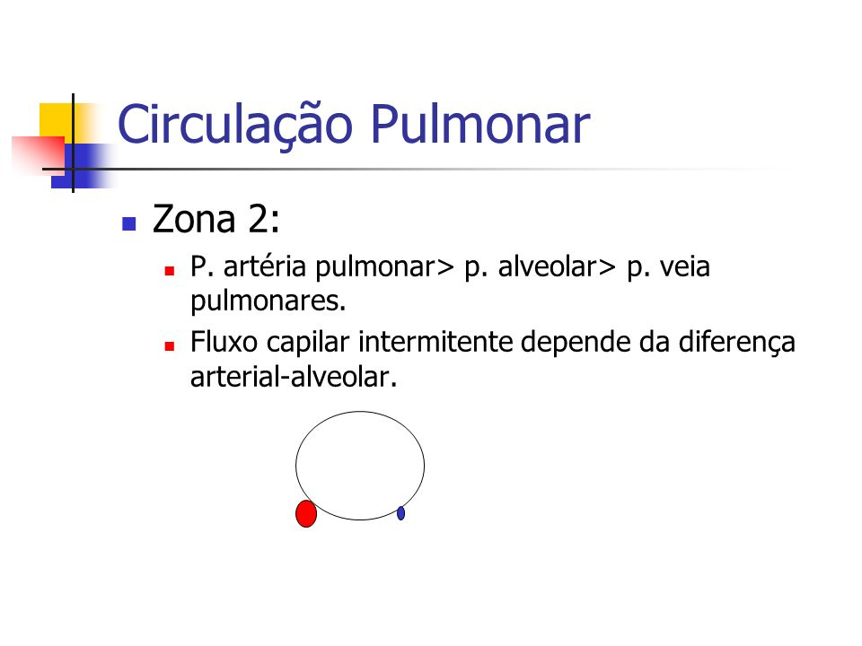 Circulação Pulmonar Zona 2: