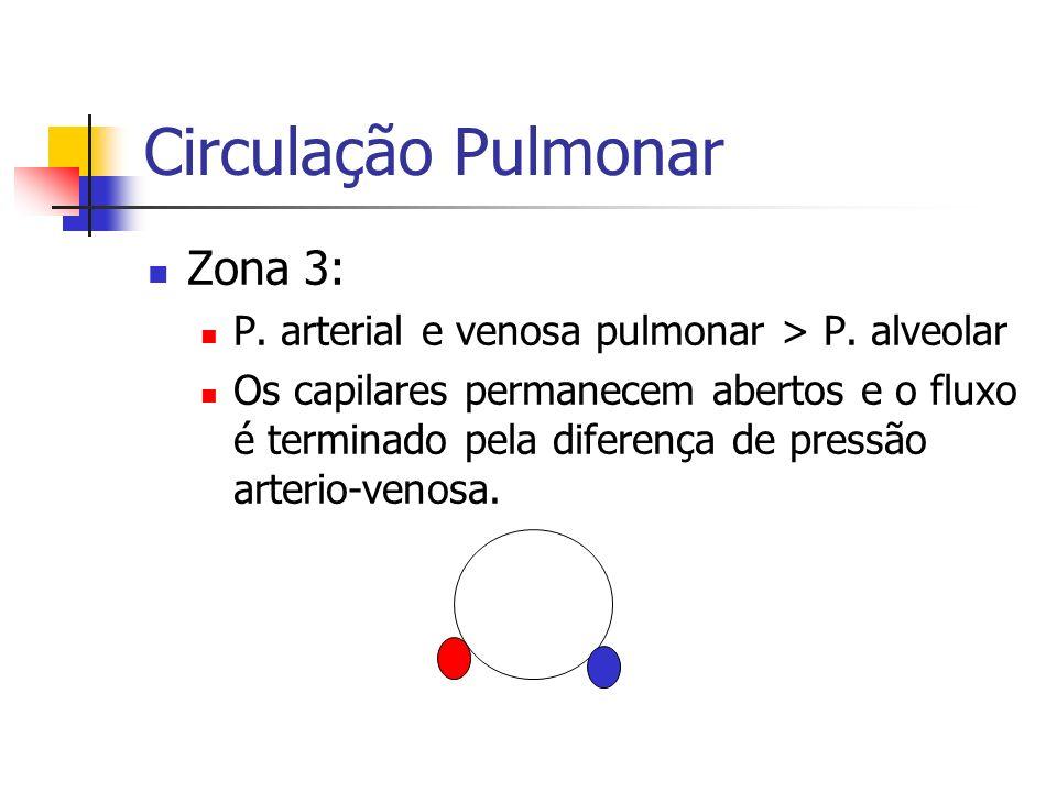 Circulação Pulmonar Zona 3: