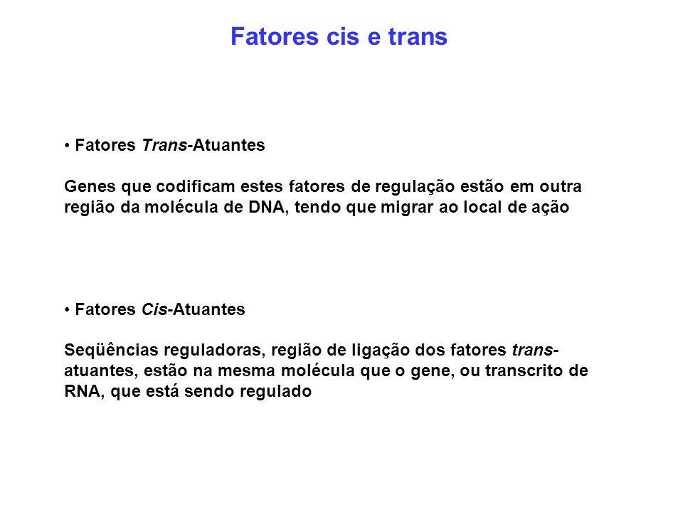 Fatores cis e trans • Fatores Trans-Atuantes