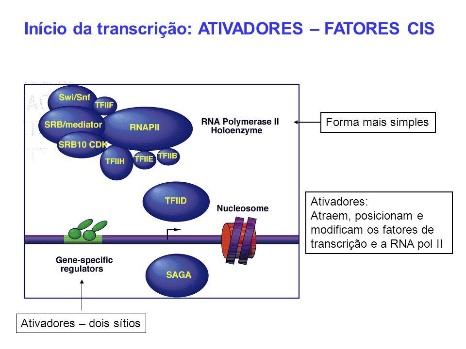 Início da transcrição: ATIVADORES – FATORES CIS