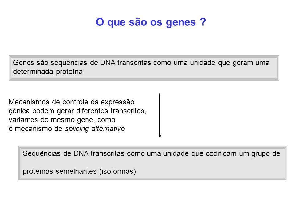 O que são os genes Genes são sequências de DNA transcritas como uma unidade que geram uma. determinada proteína.