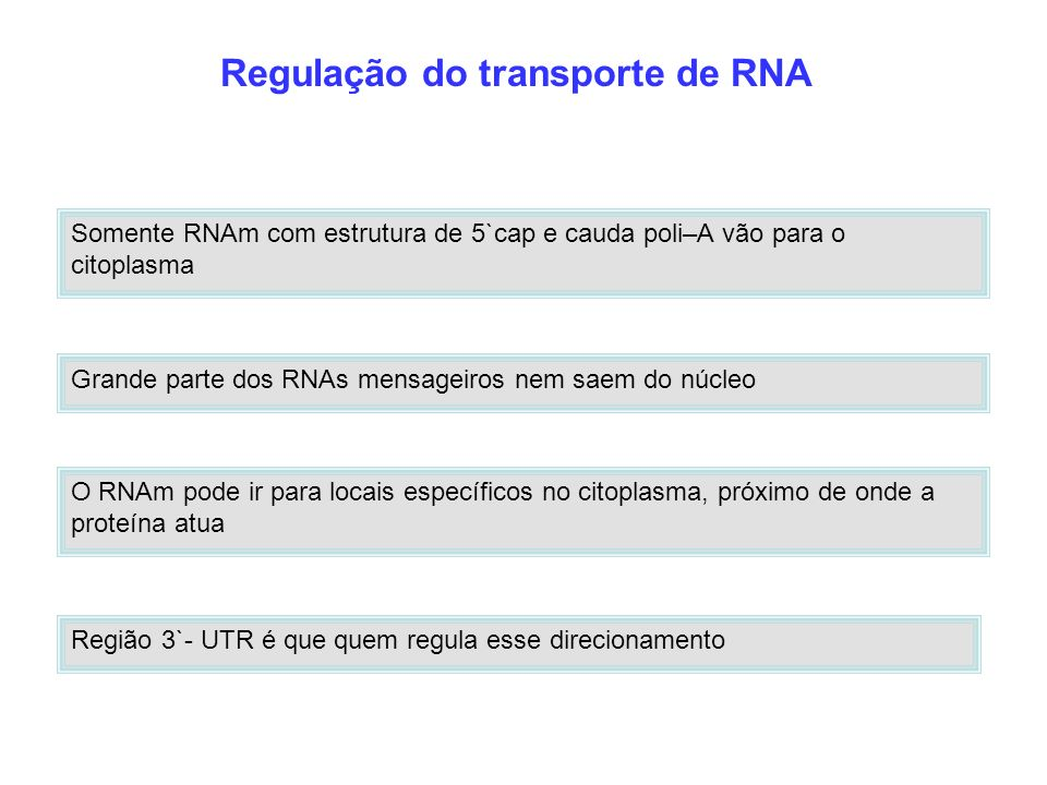 Regulação do transporte de RNA