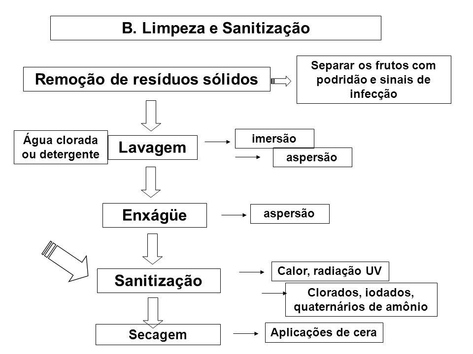 B. Limpeza e Sanitização
