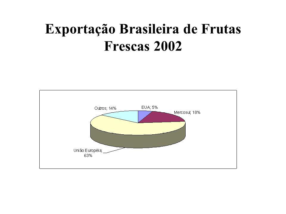 Exportação Brasileira de Frutas Frescas 2002