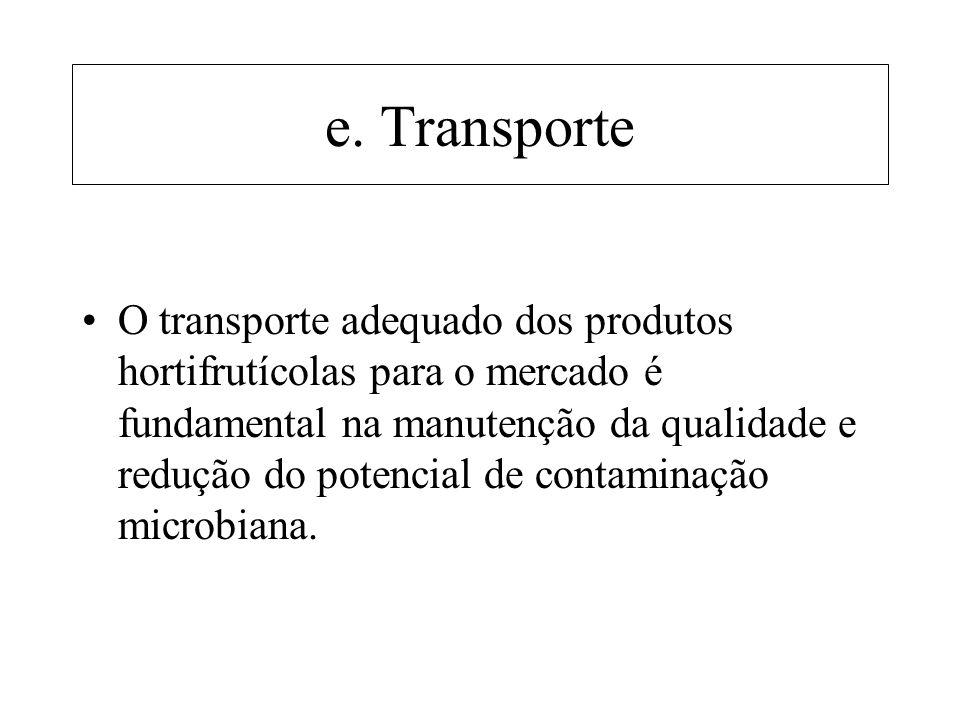 e. Transporte