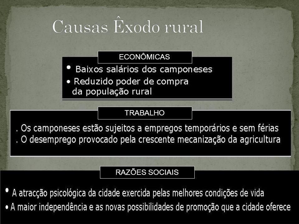 Causas Êxodo rural ECONÔMICAS TRABALHO RAZÕES SOCIAIS