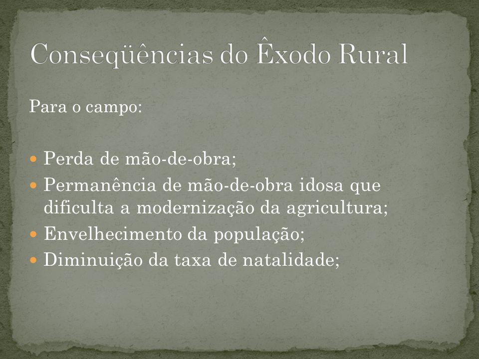 Conseqüências do Êxodo Rural