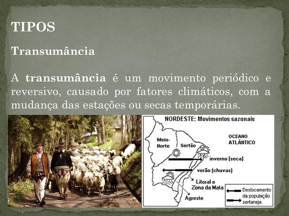 TIPOS Transumância.
