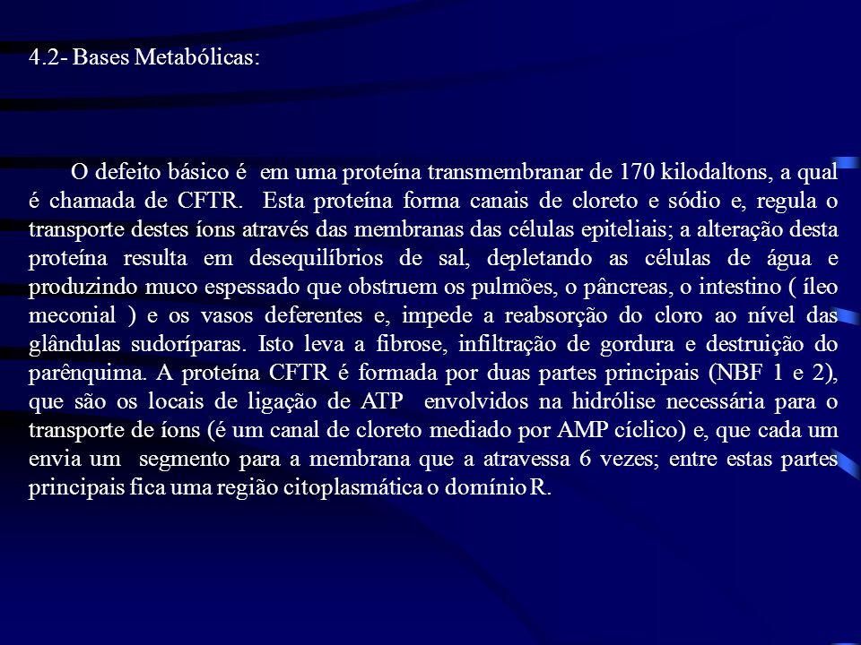 4.2- Bases Metabólicas: