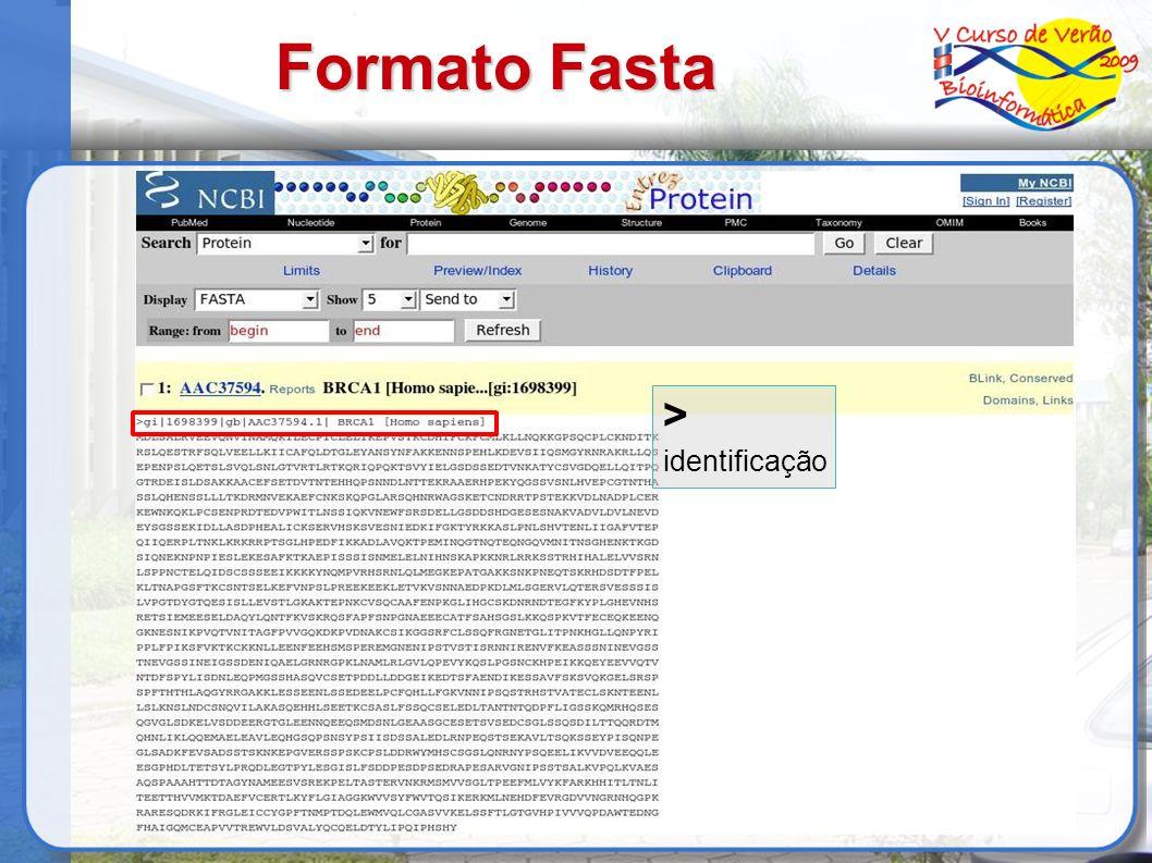 Formato Fasta > identificação 11