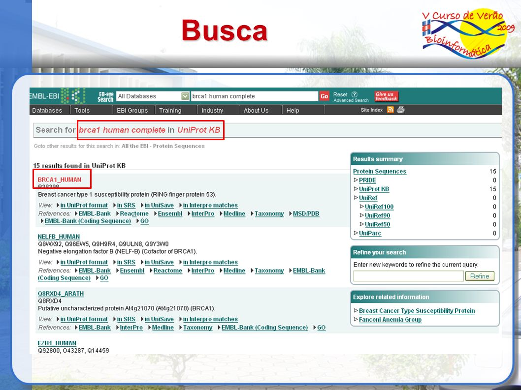 Busca 23