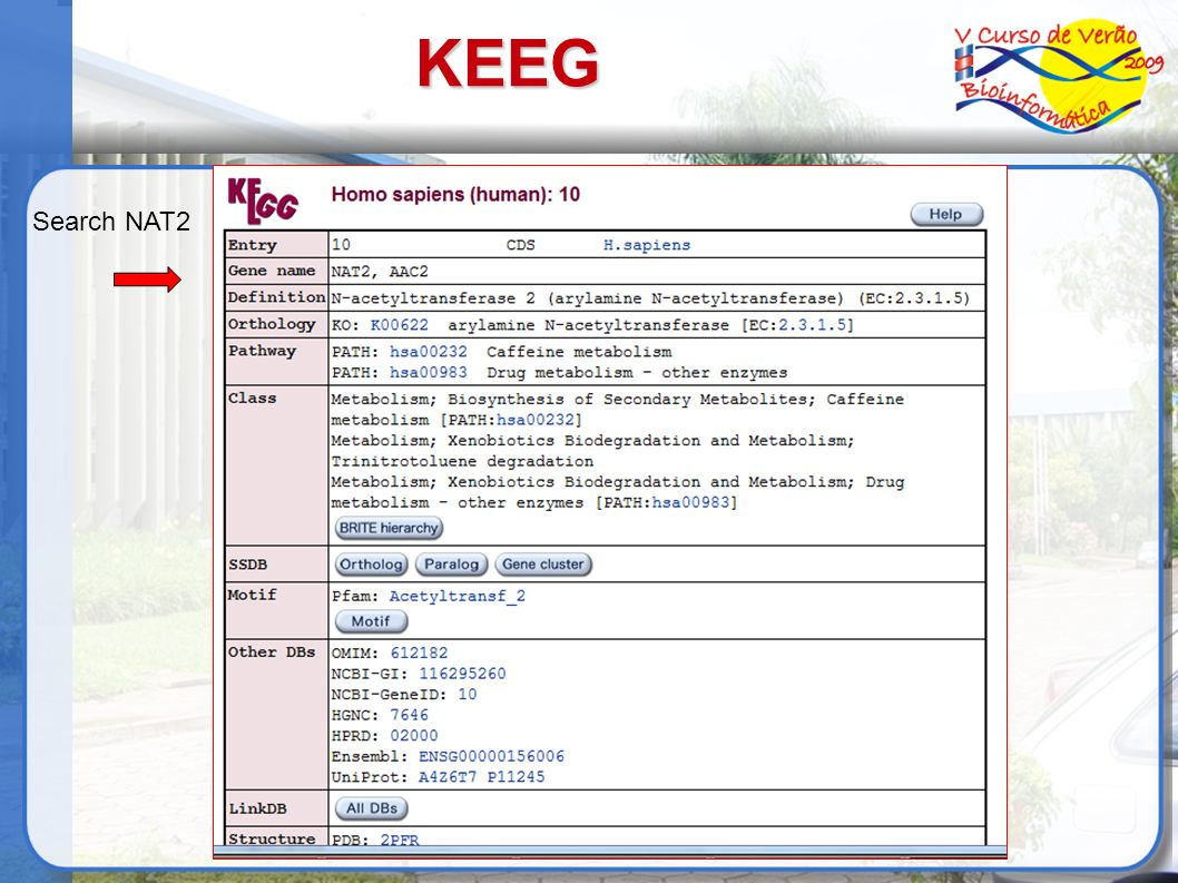 KEEG Search NAT2 38