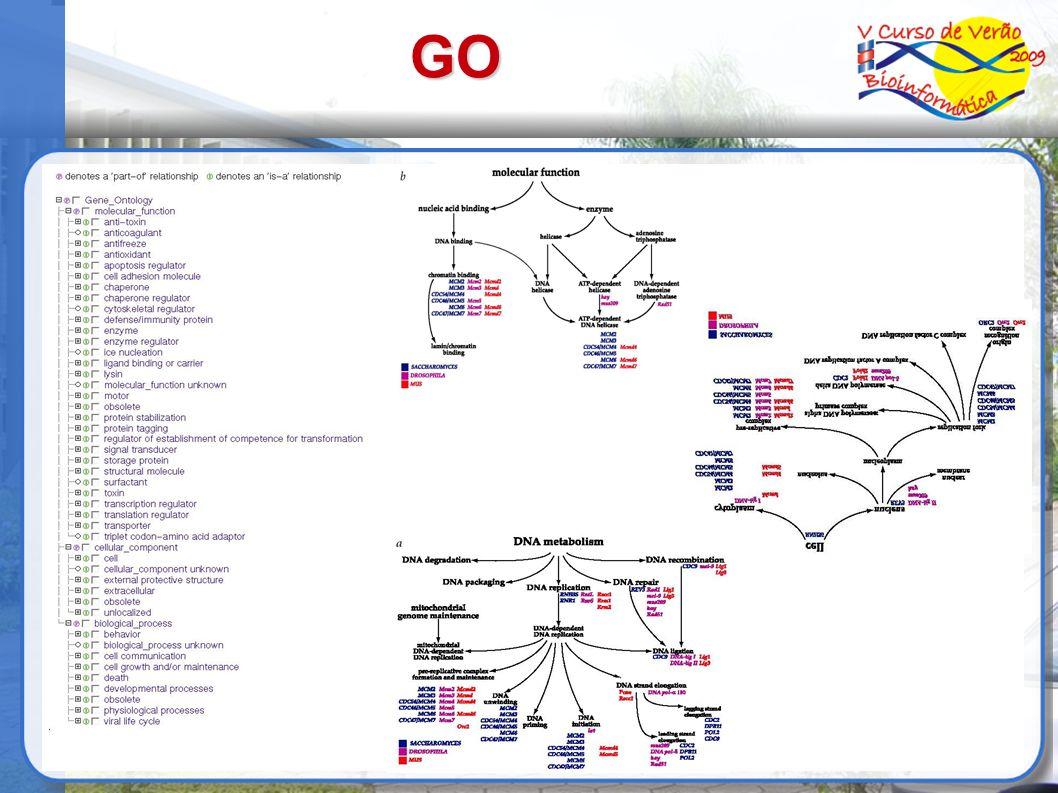 GO Componentes celulares Processos biológicos Funções moleculares