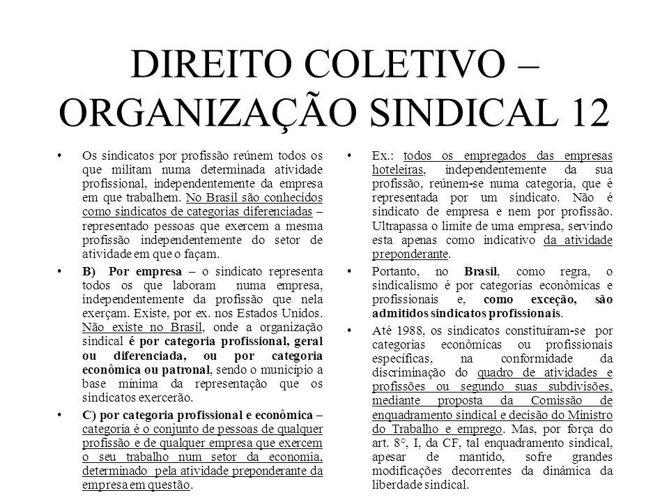 DIREITO COLETIVO – ORGANIZAÇÃO SINDICAL 12