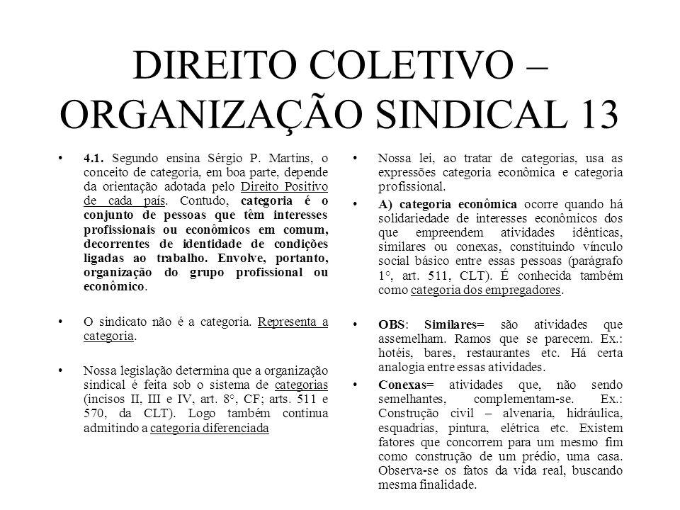DIREITO COLETIVO – ORGANIZAÇÃO SINDICAL 13