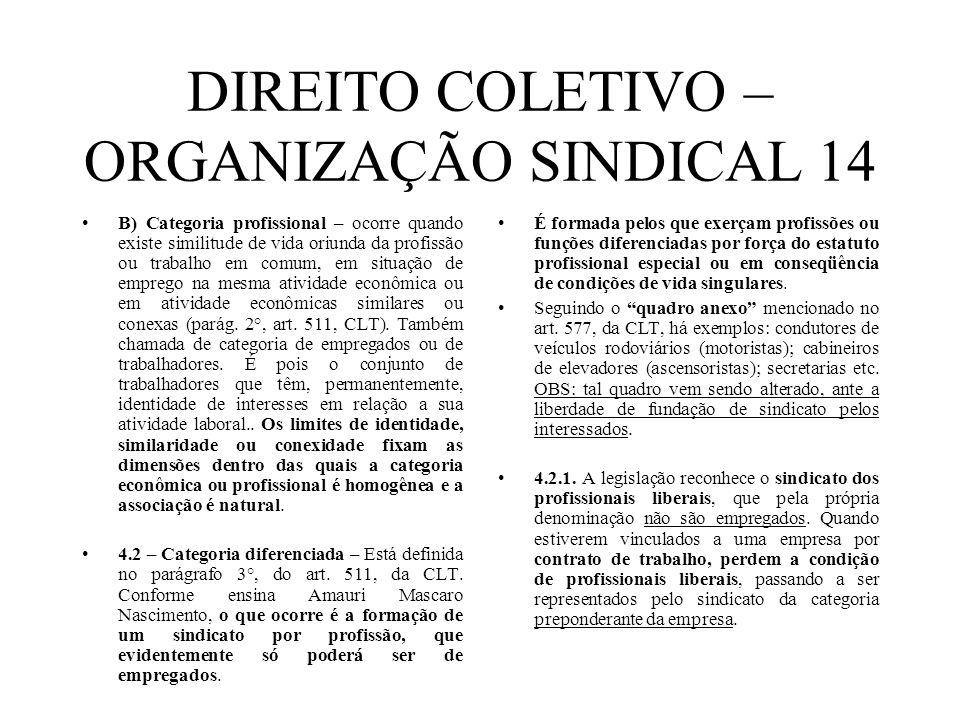 DIREITO COLETIVO – ORGANIZAÇÃO SINDICAL 14