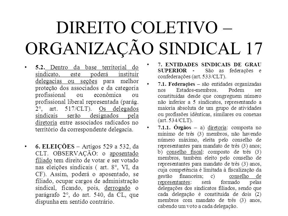 DIREITO COLETIVO – ORGANIZAÇÃO SINDICAL 17
