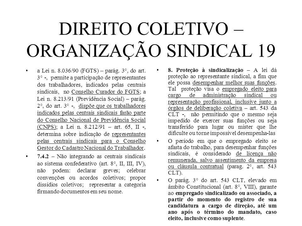 DIREITO COLETIVO – ORGANIZAÇÃO SINDICAL 19