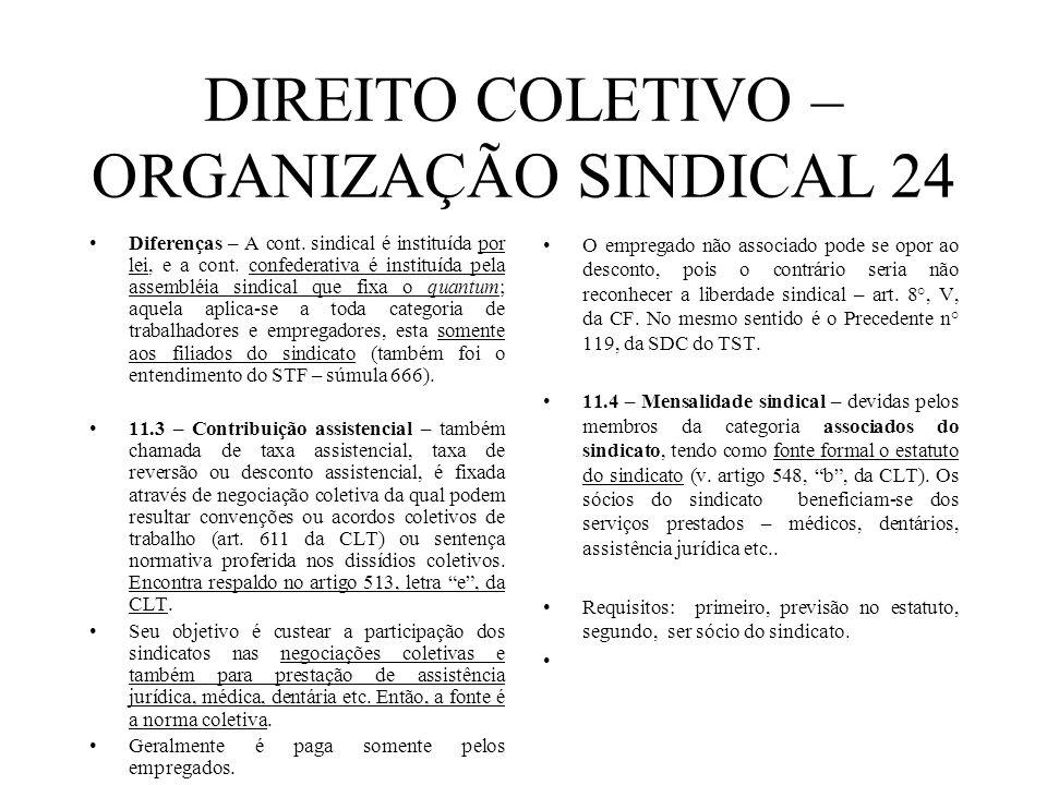 DIREITO COLETIVO – ORGANIZAÇÃO SINDICAL 24