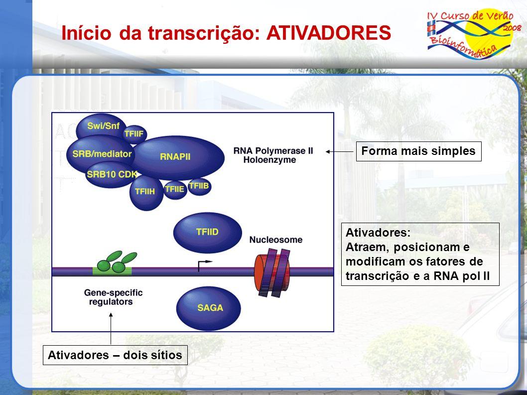 Início da transcrição: ATIVADORES