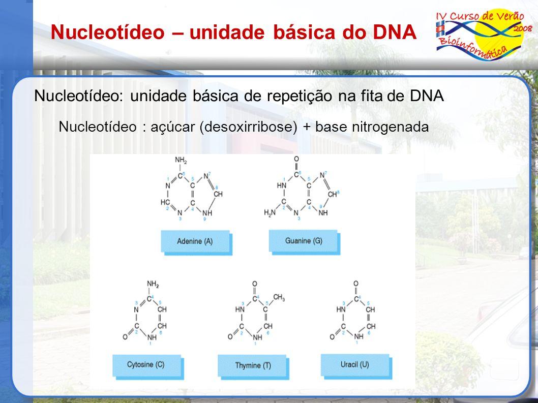 Nucleotídeo – unidade básica do DNA