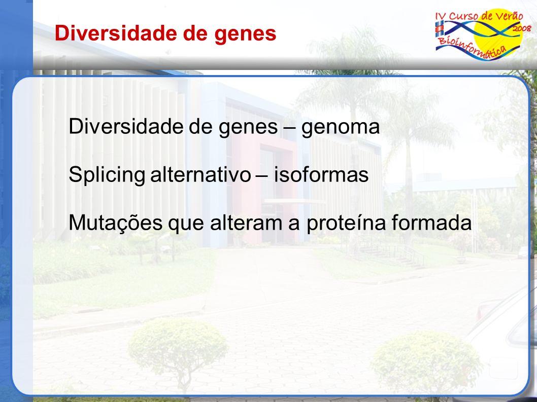 Diversidade de genes Diversidade de genes – genoma.